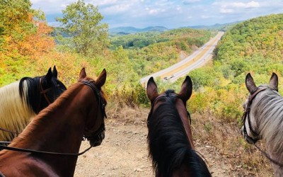 Equestrian Trail Rides Offer Unique Views of Fall Colors